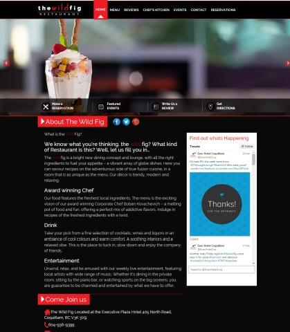 wildfig-website